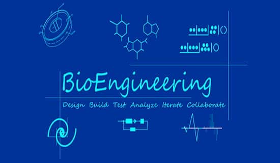 Bio Medical Engineering